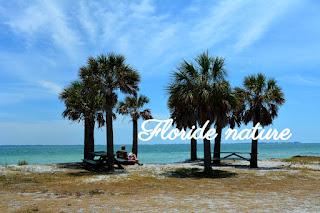 plage de la côte ouest de Floride