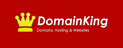 web hosting company in nigeria domainking