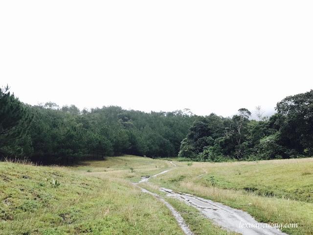 Trekking%2BTa%2BNang%2BPhan%2BDung%2B5 - Cung đường trekking Tà Năng - Phan Dũng ngày trở lại, mùa mưa 2016