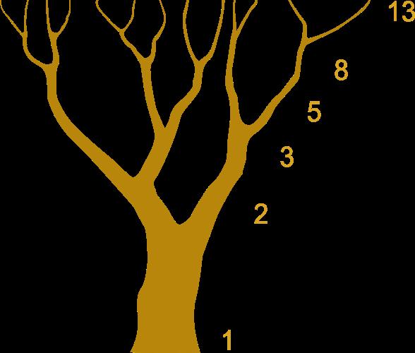 Arbol, Fibonacci