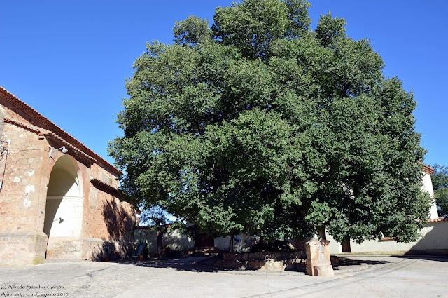 alobras-teruel-iglesia-parroquial-olmo