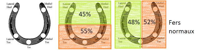 Articles sur les pieds des chevaux Comparaison%2Bpressions