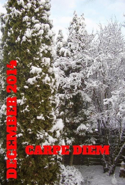 http://chevrefeuillescarpediem.blogspot.in/2014/12/carpe-diem-618-peace.html