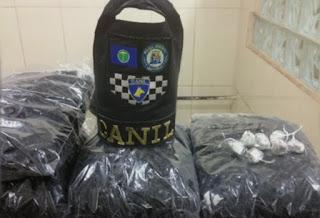 GCM de São Carlos, SP, apreende 28 mil embalagens para cocaína