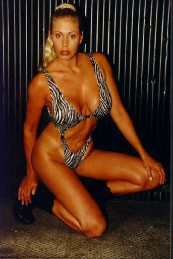 Necessary Sexy women of wrestling missy hyatt