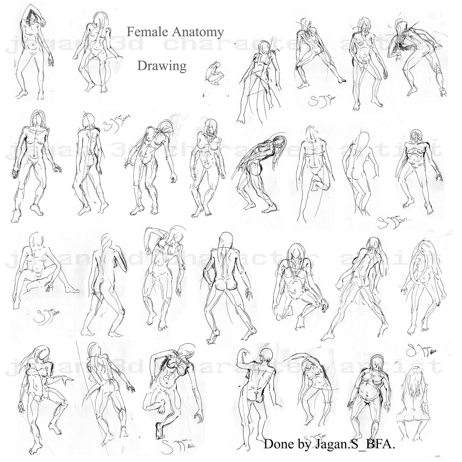 Jagan 3d Character Artist Human Anatomy Drawings Medium
