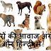 जानवरों की आवाज अंग्रेजी और हिन्दी में - Animal Voice In English