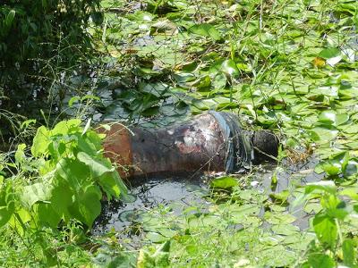 GROAÍRAS-CE: Homem é encontrado morto próximo a ''curva do Lúcio'', na CE-179