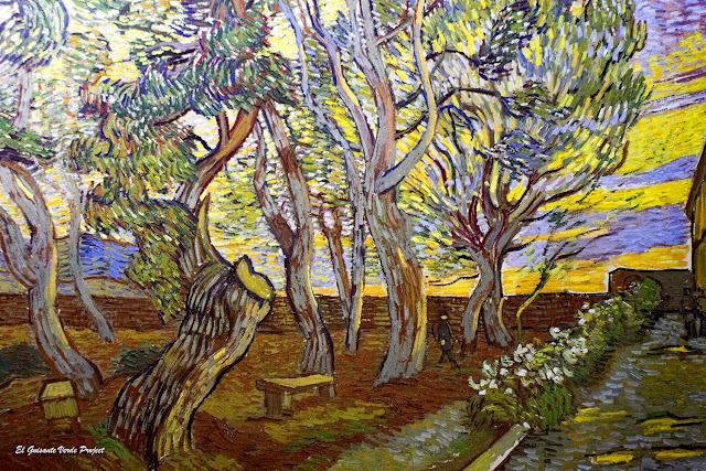Van Gogh, Jardín del Hospital de Saint-Paul - Van Gogh Museum, Amsterdam por El Guisante Verde Project