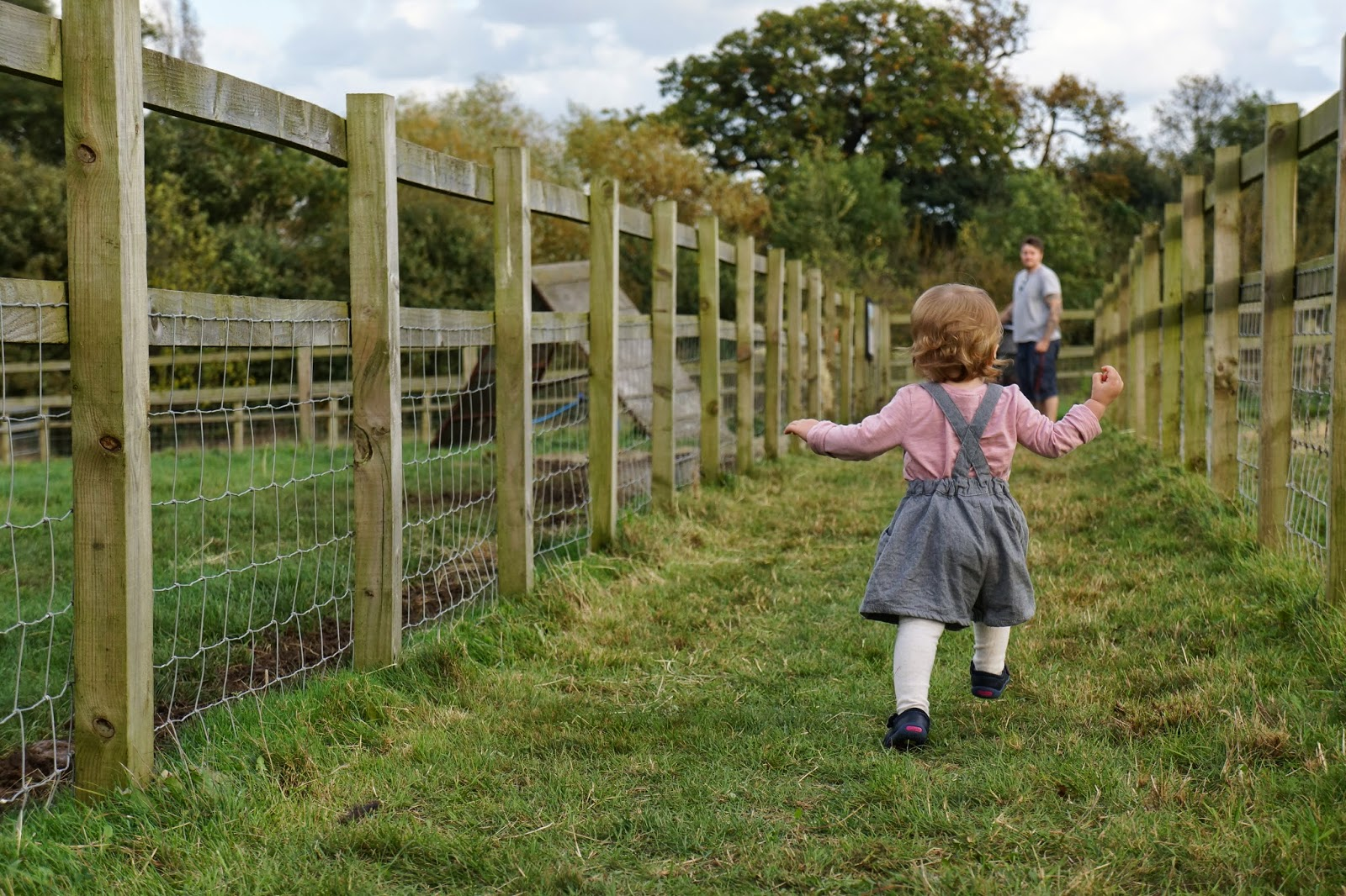 baby running to daddy at farm