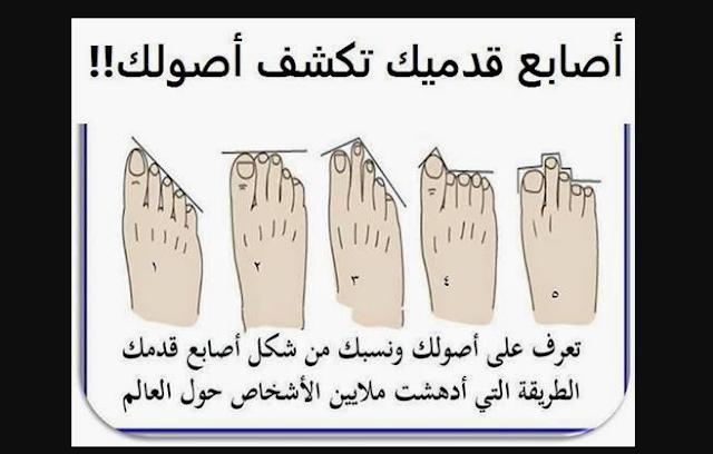 هل تريد أن تعرف أصلك ونسبك من شكل أصابع قدمك؟ شاهدوا إلى أصل تنتمون من أصابع قدمكم !