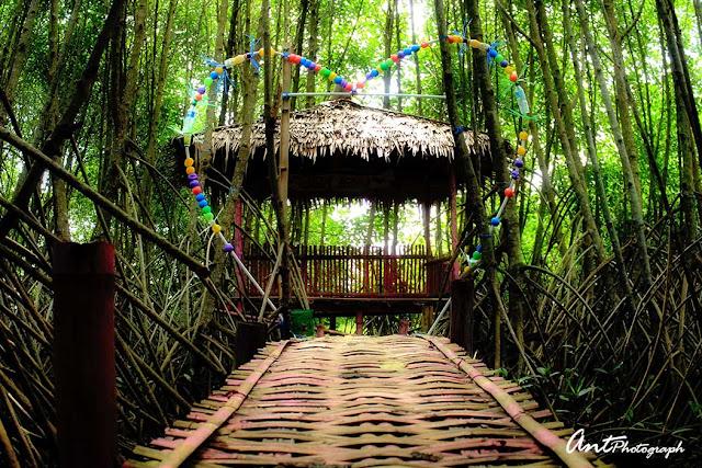Hutan Mangrove Warna Tirta