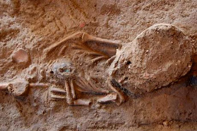 Ancient Milan church yields tombs, coins from 4th century