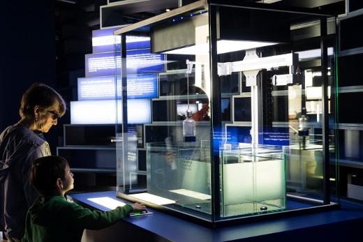 El Museu de les Ciències y la Obra Social 'la Caixa' presentan la exposición 'Mediterrani. El nostre mar, com mai l'has vist'