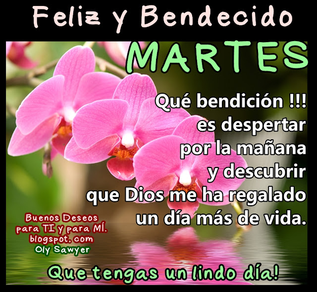 Feliz y Bendecido  MARTES  Qué bendición es despertar por la mañana  y descubrir que Dios me ha regalado un día más de vida!  Que tengas un lindo día !