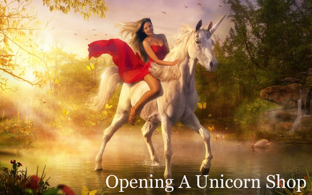 Opening A Unicorn Shop