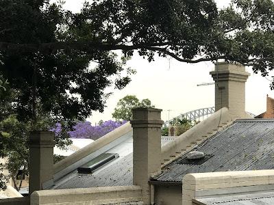 Woolloomooloo rooftop view if Sydney Harbour Bridge and jacaranda in rain