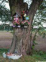 Jaszkotle, kapliczka na drzewie