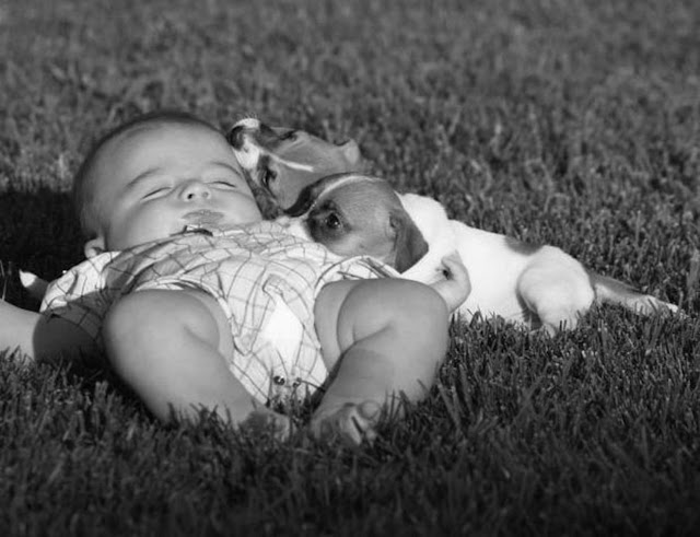 Image: Sleeping baby. Photo credit: Melissa Ricquier, on FreeImage