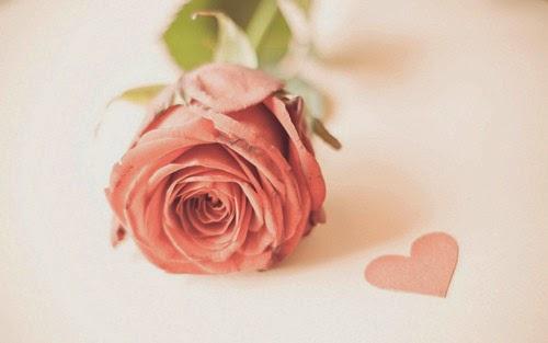 Kata Kata Cinta Sejati Romantis untuk Kekasih
