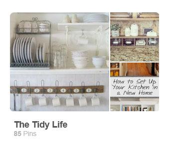 https://www.pinterest.com/thegoodvillain/the-tidy-life/