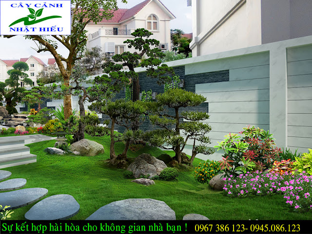 Thiết kế sân vườn đẹp tại Hà Nội