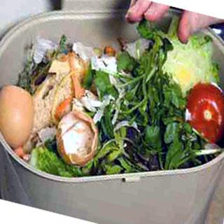 bahan baku pupuk organik cair