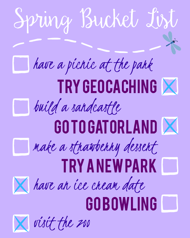 Sweet Turtle Soup - Spring Bucket List: go to gatorland