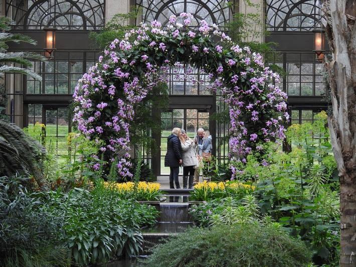Longwood Gardens 2017 Orchid Extravaganza