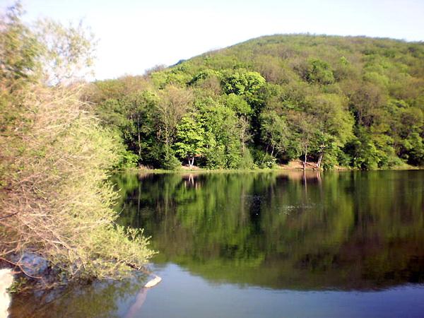 Озеро в Краснолесье