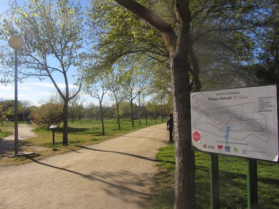 Senda Botánica del Parque con paneles ilustrativos que explican tanto la vegetación como la fauna que te vas encontrando.