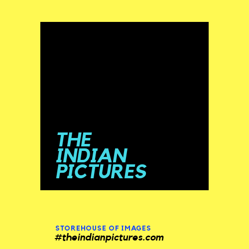 The Indian Picures