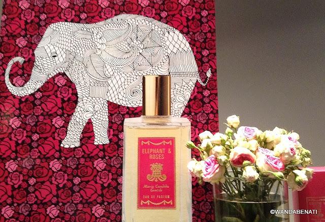 Elephant & Roses di Maria Candida Gentile