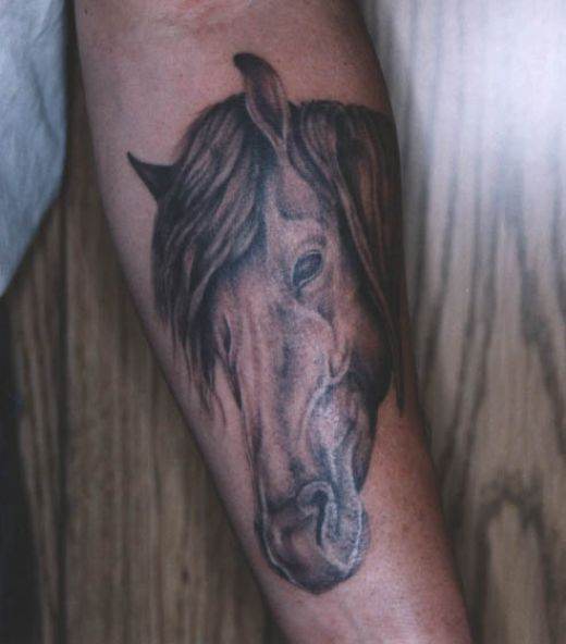 Tattoo Design: Horse Head Tattoos