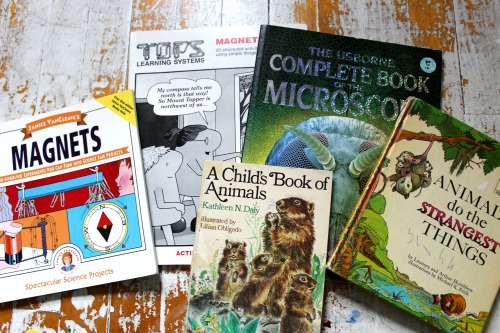The Quick-Start Guide to Clearing Out Unwanted Curriculum #homeschool #curriculum