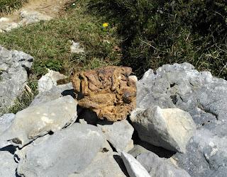Nódulo de limonita entre las calizas del Jorrios, Turtzioz, Bizkaia