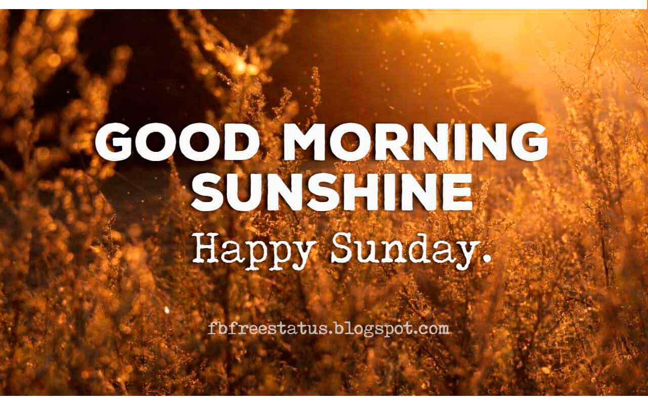 Good Morning Sunshine, Happy Sunday.