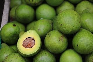 avocado,alpukat,buah alpukat