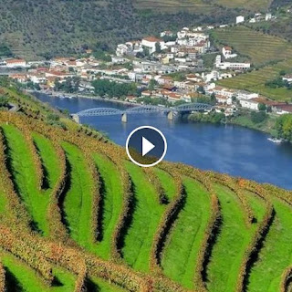 https://www.facebook.com/absolutoportugal/videos/10153771480428935/