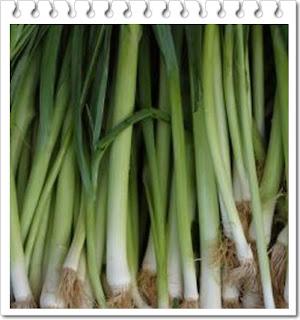 Manfaat daun bawang bagi kesehatan