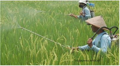 Macam pestisida berdasarkan fungsi/sasarannya