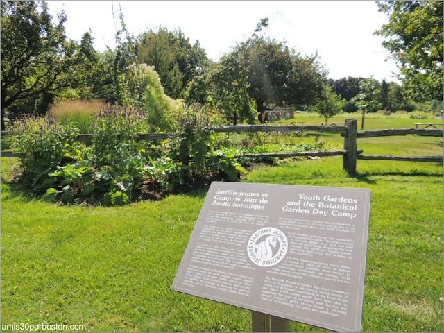 Youth Gardens en el Jardín Botánico de Montreal