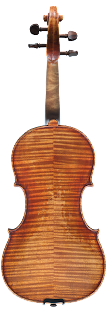 violin backplate