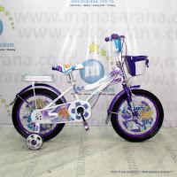 Sepeda Anak Exotic 9911 Mini 16 Inci