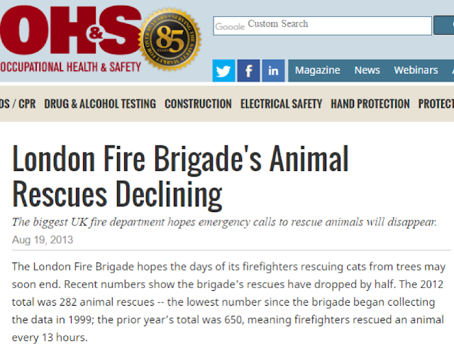 News article on the decline of animal rescue services.