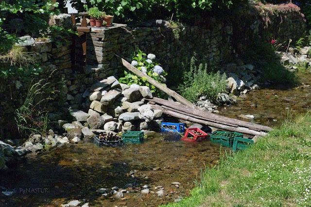 Río Turia - Ruta del Agua - Asturias