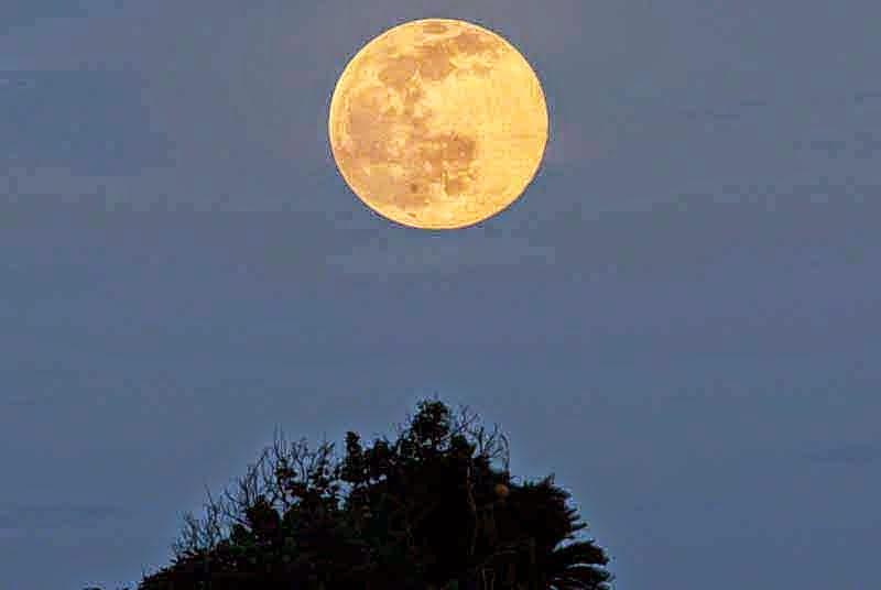Ryukyu Life June 2015 Full Moon Rising Over Shark Fin Rock