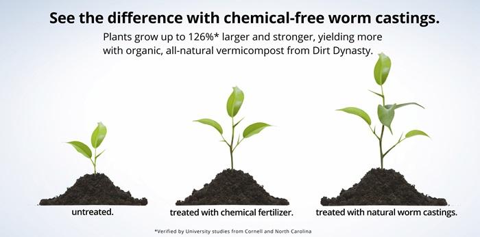 Perbedaan Pupuk Kimia Dan Pupuk Kascing