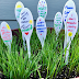 Plant Markers for Your Garden