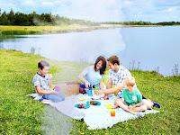 Bir göl kenarında yerde çimler üstünde piknik yapan bir aile